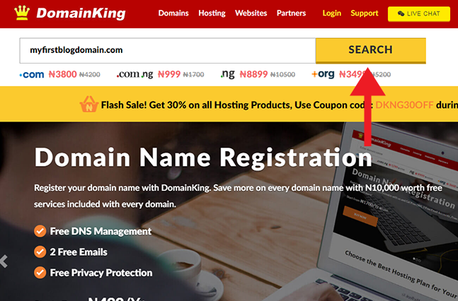 domain name search domainking nigeria