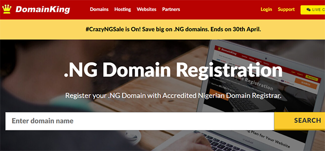 domainking website