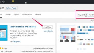 insert html javacript in wordpress header and footer